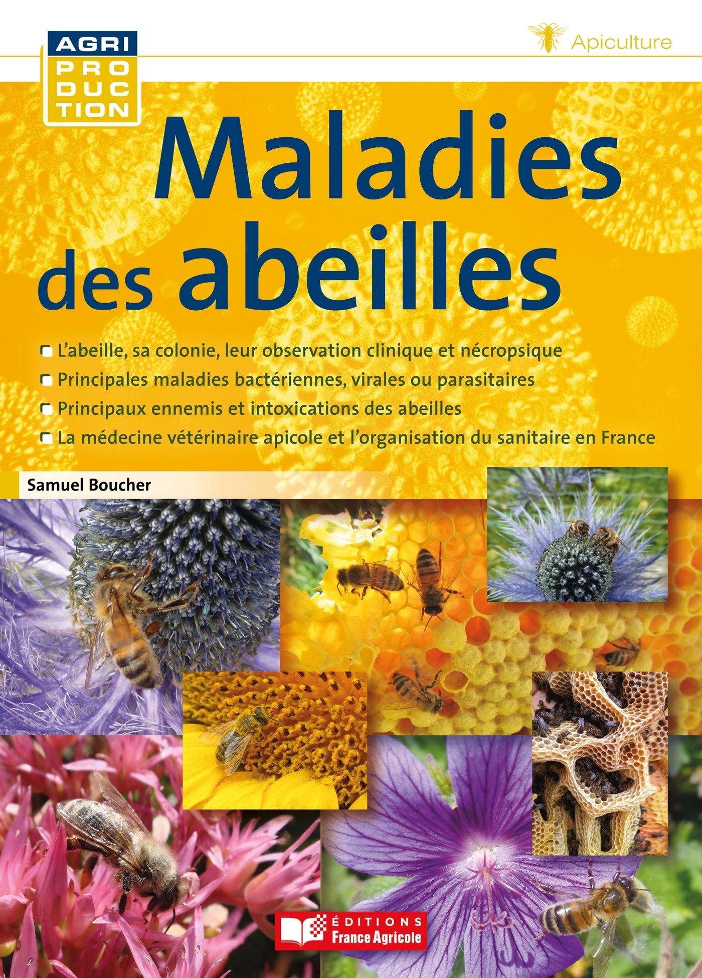 C7 maladies des abeilles - boucher