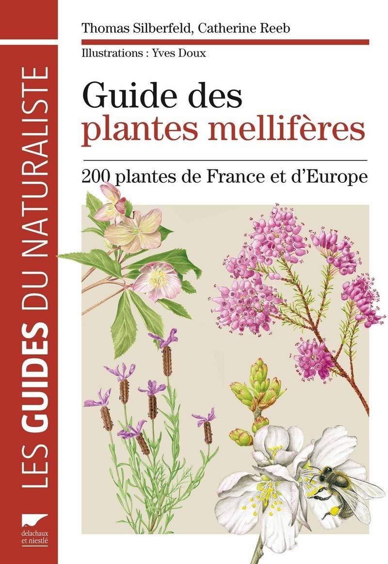 E2 les plantes melliferes - Silberfeld